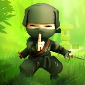 Profile_55198_pi_ninja