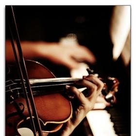 Profile_55861_pi_Violin