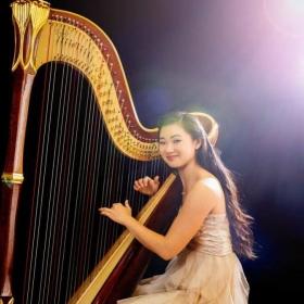 Profile 80052 pi harp