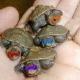 Thumb_46721_pi_turtles